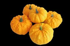 Free Ornamental Squash Stock Image - 3229511