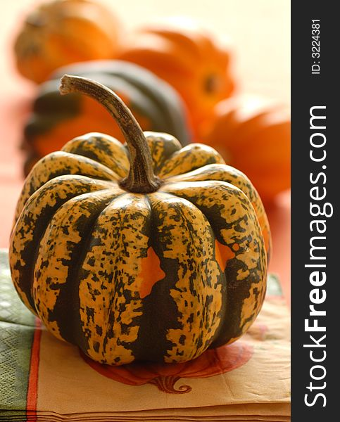 Several colorful pumpkins