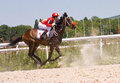Free Horse Racing Stock Images - 32238034