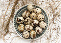Free A Plate With Quail Eggs Stock Photo - 32239350