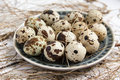 Free A Plate With Quail Eggs Royalty Free Stock Photo - 32239365