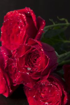 Free Red Rose Royalty Free Stock Images - 32238789