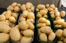 Free Potatoes At Farmers Market Royalty Free Stock Images - 32243739