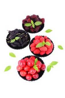 Mulberry, Cherry, Raspberry, Blackberry In A Plates_5 Stock Photography