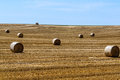 Free Straw Field Stock Photo - 32253490