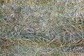 Free Bale Of Hay Stock Image - 32259871