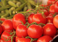 Free Red Tomatoes Stock Image - 32263411