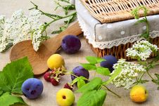 Ripe Fruit And Wild Flowers Royalty Free Stock Photography