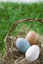 Free Easter Eggs In Basket Royalty Free Stock Photography - 32275247
