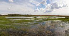 Free Laguna Wetland In The Field Stock Image - 32271271