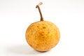 Free Santol Meliaceae Fruit Stock Images - 32291604