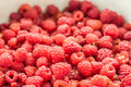 Free Raspberries Background Royalty Free Stock Photo - 32296835
