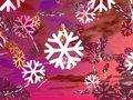Free Winter Snow Royalty Free Stock Photo - 3230535