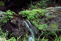 Free A Small Waterfall Stock Images - 3233044
