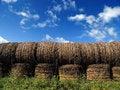 Free Hay Bales Stock Photos - 3239443