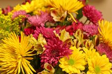 Free Purple And Yellow Bouquet Stock Photos - 3230313