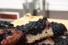 Free Black Currant Pie Stock Photos - 3232483