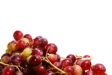Free Juicy Grapes Royalty Free Stock Image - 3233816
