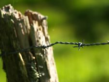 Free Barb Wire Royalty Free Stock Image - 3237586