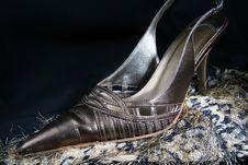 Free Highheeled Shoes Royalty Free Stock Photo - 3238405