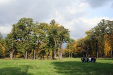 Free Colorful Old Autumn Park Royalty Free Stock Image - 3238546
