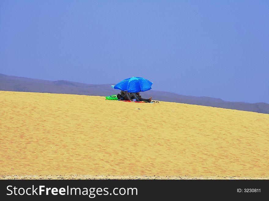 Under the sun on the dune