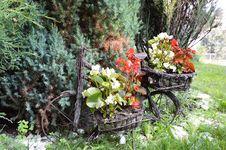 Free My Garden Stock Photo - 32311660