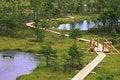 Free Swamp Lakes Royalty Free Stock Image - 32320716