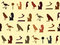 Free Seamless Texture With Egyptian Symbols Royalty Free Stock Images - 32337259