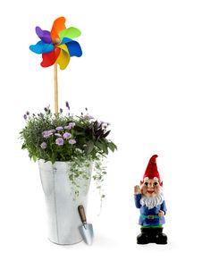 Aluminum Bucket With Spring Flowers Stock Photos