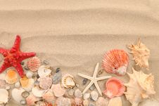 Free Lot Of Shells And Seastars On Sandy Background Royalty Free Stock Photos - 32354778