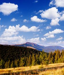Bright Day In The Mountains Royalty Free Stock Images
