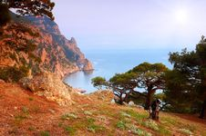 Summer Landscape By The Sea Stock Photography