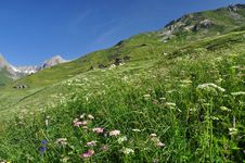 Free Grand St. Bernard Region, Italian Alps, Aosta Valley. Royalty Free Stock Image - 32380256