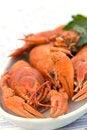 Free Crayfish Crab Crawfish Red On A Platter Royalty Free Stock Image - 32392336