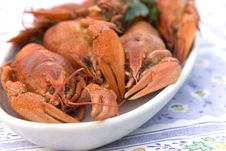 Crayfish Crab Crawfish Red On A Platter Royalty Free Stock Image