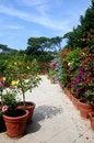 Free Beautiful Garden Stock Image - 3246411