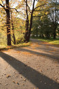 Free Indian Summer 7 Stock Photography - 3248512