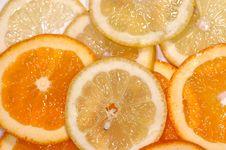 Free Orange And Lemon Stock Photo - 3241110