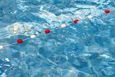 Free Pool Stock Image - 3241331