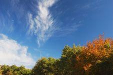 Free Autumn Arrives Stock Photo - 3241650