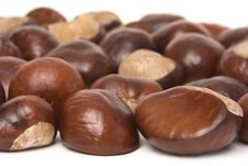 Free Chestnuts Stock Images - 3241904
