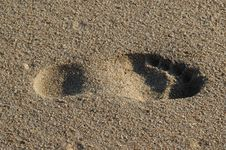 Free An Isolated Footprint In The S Stock Images - 3242514