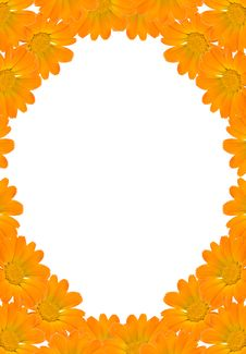 Free Floral Background Frame Royalty Free Stock Image - 3244276