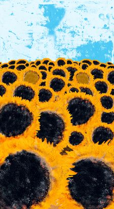 Free Field Of Sunflowers Stock Image - 3247001