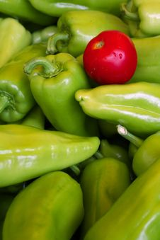 Free Vegetables - Pepper And Tomato Royalty Free Stock Image - 3248066