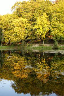 Free On Coast Of Lake Stock Image - 3249341