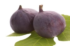 Free Figs Stock Images - 3249954