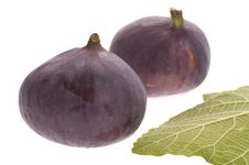 Free Figs Stock Images - 3249964