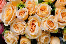 Free Fabric Roses Royalty Free Stock Photos - 32409408